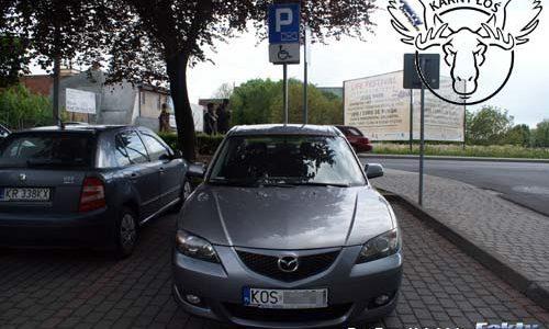 OŚWIĘCIM. Kolejne Karne Łosie za głupie parkowanie