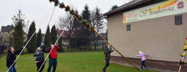 Zwyciężyła włosienicka dziewięciometrowa palma – FOTO