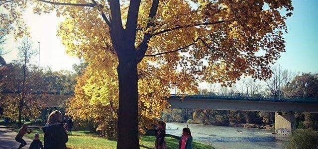 Jesień w Oświęcimiu – FOTO