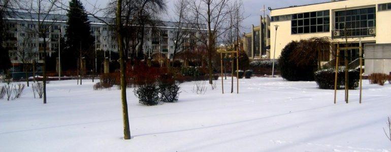 Zima w Oświęcimiu – FOTO