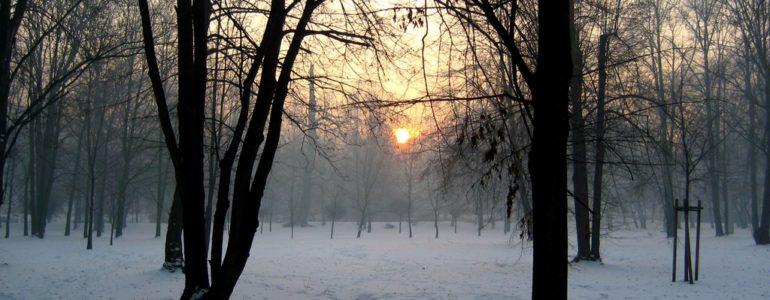 Pogodne i słoneczne niebo