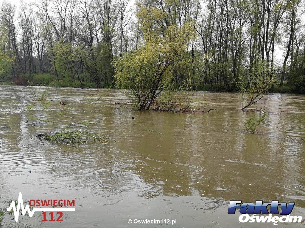 Oświęcim, Soła, rzeka, alarm, powódź, pogotowie, woda