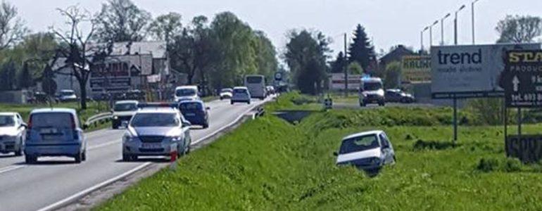 Sarna przyczyną kolizji drogowej