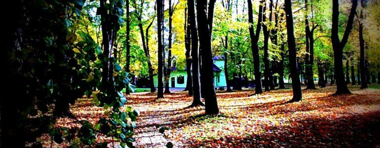 Piękna złota jesień – FOTO