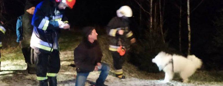 Dwa psy dryfowały na krze. Uratowali je strażacy – FOTO