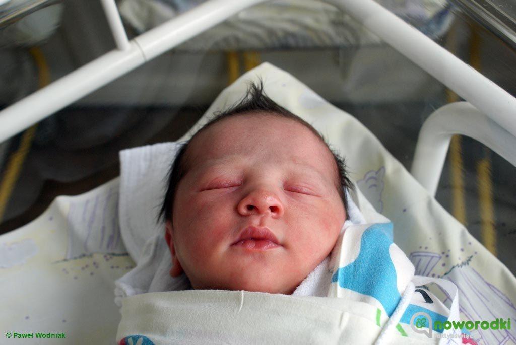 Od pewnego czasu chłopcy mają na oddziale noworodkowym Szpitala Powiatowego w Oświęcimiu liczebną przewagę nad dziewczynkami.