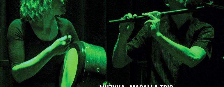 Irlandia – muzyka i taniec – koncert muzyki irlandzkiej
