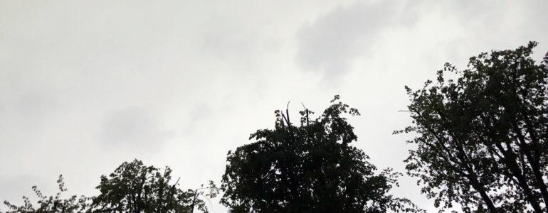 Burza postraszyła i poszła dalej – FILMY