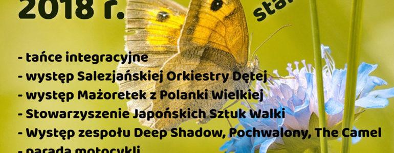 9. Salezjański Piknik Rodzinny z eFO