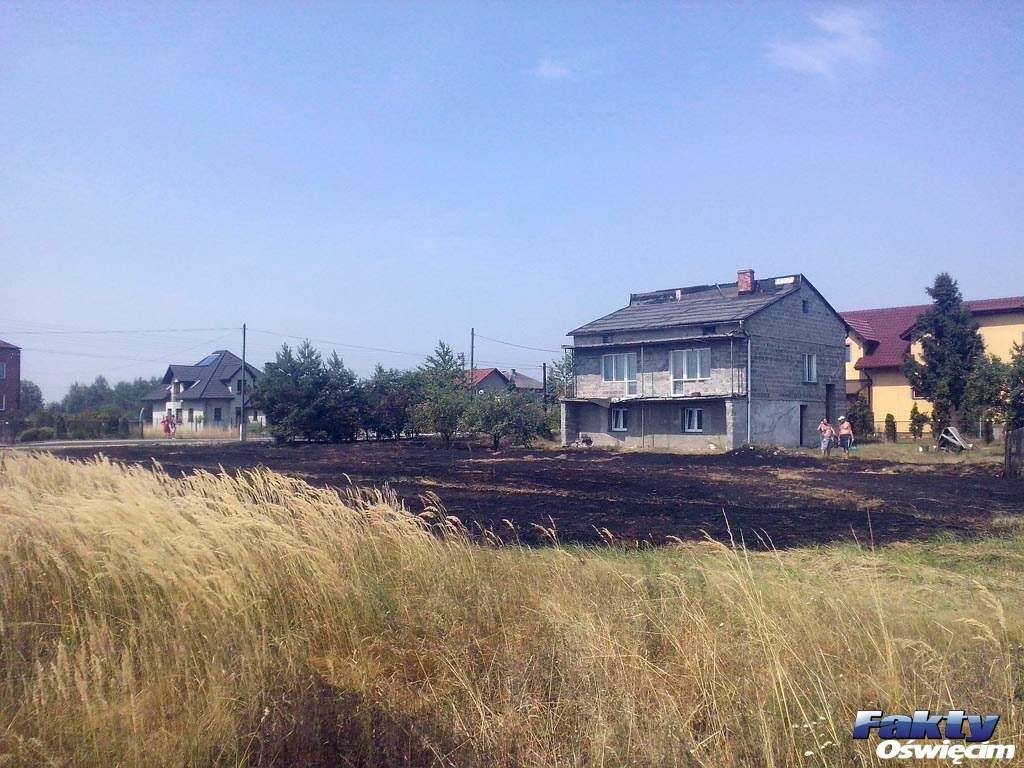 Ogień zagrażał pobliskim domostwom. Fot. Kamil Szyjka