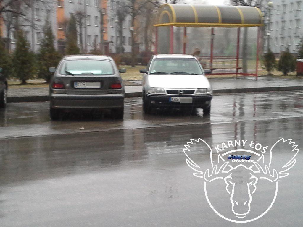 Oświęcim, Karny Łoś, Karne Łosie, parkowanie, Chełmek