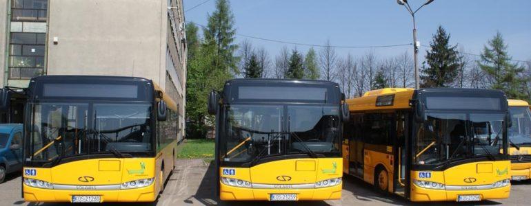 Dodatkowe autobusy po Life Festival Oświęcim