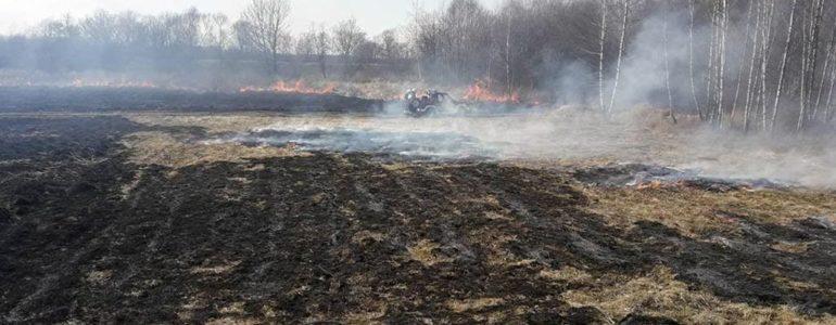 O mało nie zginął w pożarze traw – FILMY, FOTO