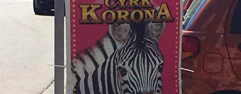 Cyrki z cyrkiem