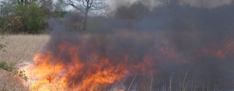 Podpalacze wpadli na gorącym uczynku