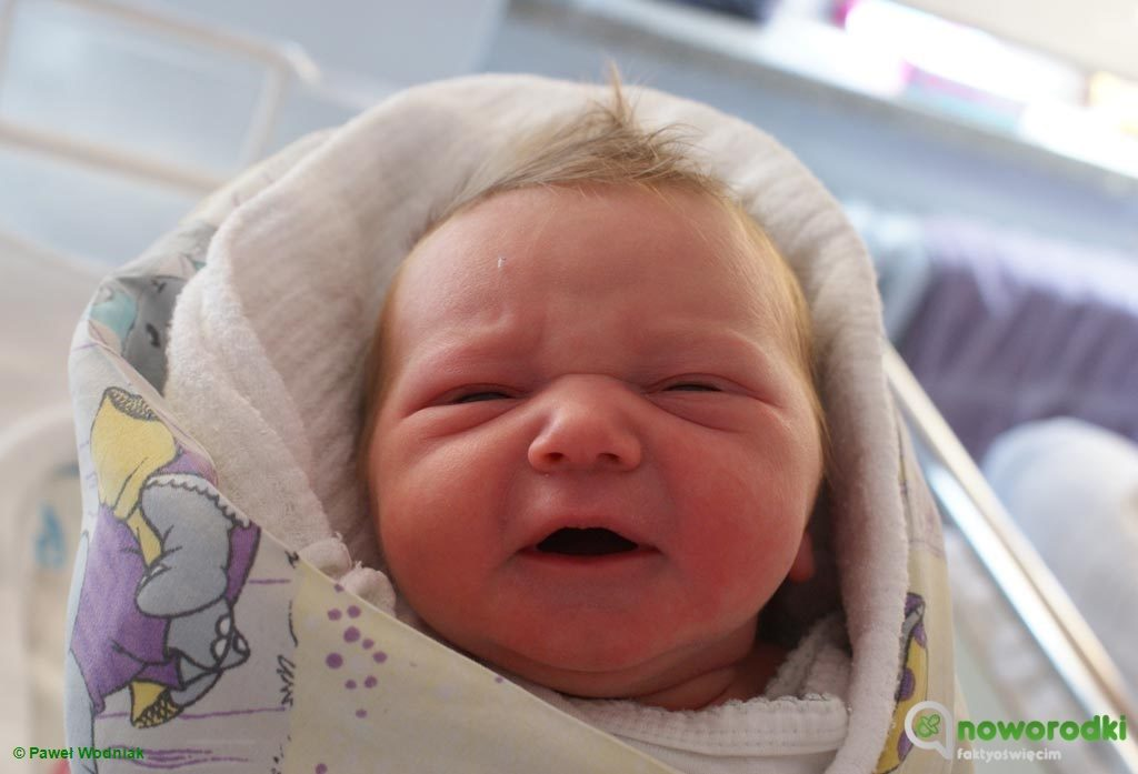 Tym razem witamy na świecie sześcioro noworodków. Cztery dziewczyny i dwóch chłopców sfotografowaliśmy w Szpitalu Powiatowym w Oświęcimiu.