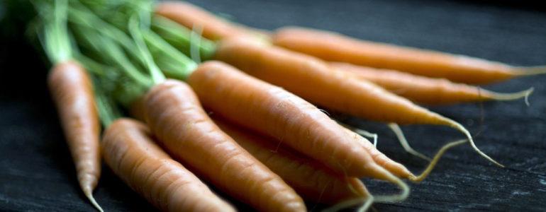 Ziemia jest skażona, ale ludzie jedzą hodowaną na niej marchewkę