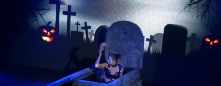 Halloween zakończyło sezon w Energylandii – FILM
