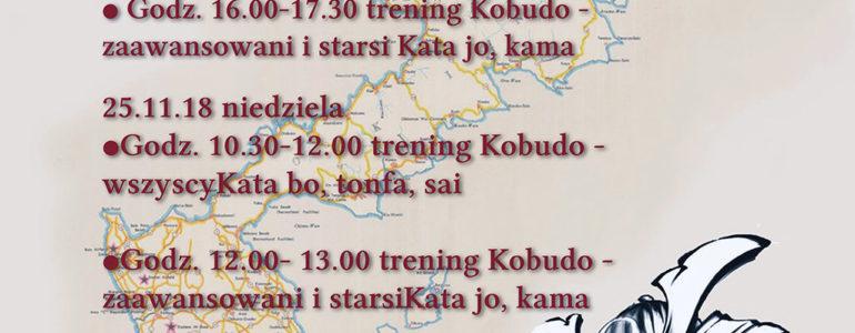 Staż Okinawa Kobudo i Karate