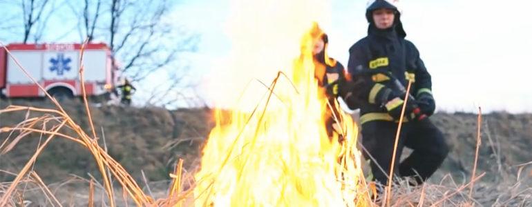 Młodzi mają dość wypalania traw – FILM