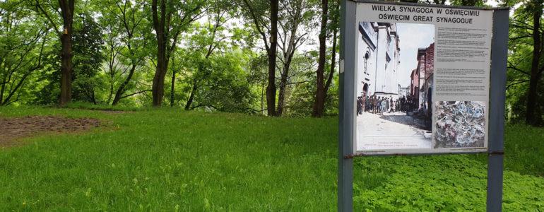 Wspaniałe nagrody za pomoc w stworzeniu parku – FOTO
