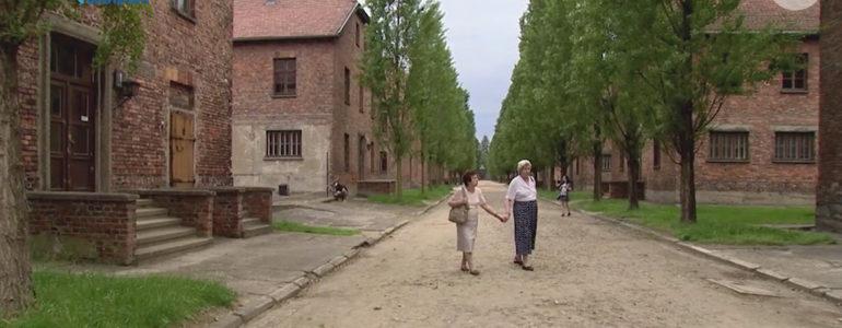 Przyjaźń, która zaczęła się w obozie koncentracyjnym – FILM