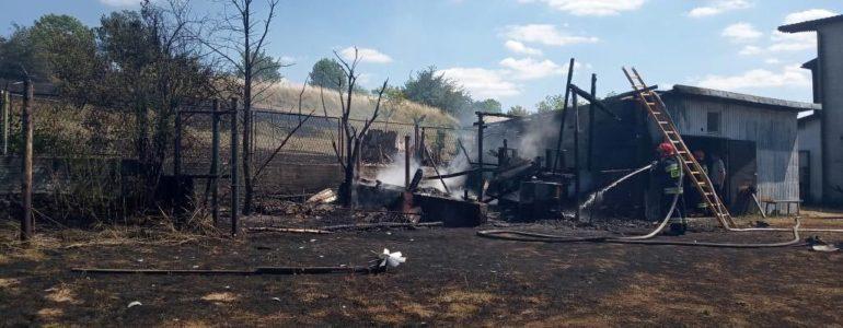 Osiem zastępów walczyło z pożarem – FOTO