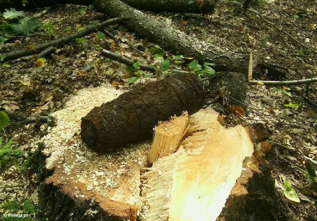Leśniczy natknął się dzisiaj w lesie w Chełmku na pocisk artyleryjski. Niewypał pochodzi najpewniej z czasów II wojny światowej. Miejsca pilnują policjanci.