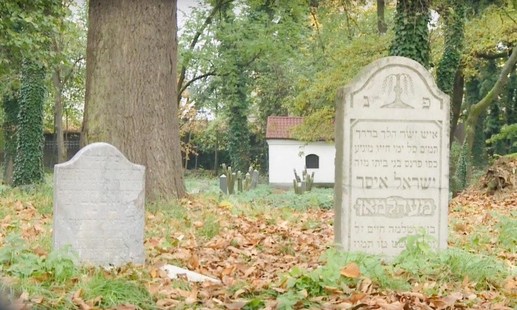 Muzeum Żydowskie w Oświęcimiu zaprasza na zwiedzanie zabytkowego cmentarza żydowskiego w Oświęcimiu. Start w niedzielę 3 listopada o godz. 10.
