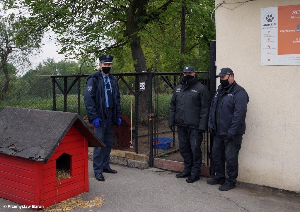 Podopieczni schroniska dla bezdomnych zwierząt w Oświęcimiu otrzymali pomoc od funkcjonariuszy Zakładu Karnego w Wadowicach. A to jeszcze nie koniec.