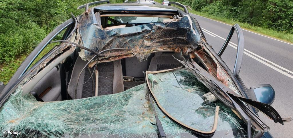 Jeleń wybiegł na drogę wprost przed samochód. Kierowca nie miał szans by wyhamować lub też ominąć zwierzę. Po zderzeniu trafił do szpitala.