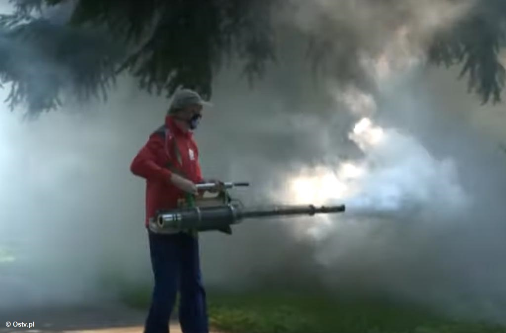 """Pierwsze wakacyjne """"Wieści z ratusza"""" przedstawiają wyniki wyborów prezydenckich, sytuację epidemiczną oraz zmagania miasta w walce z komarami."""