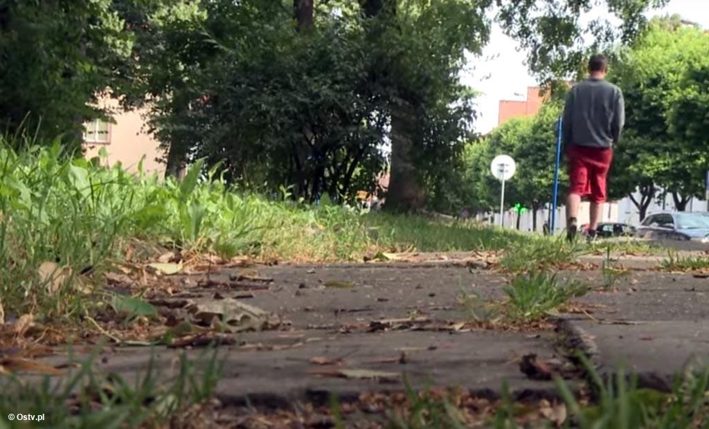 """Nowe """"Wieści z ratusza"""" mówią o kolejnych przebudowach chodników wewnątrz osiedli i zachęcają do głosowania na Oświęcim w małopolskim plebiscycie."""