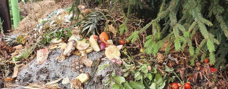 Straż miejska skontroluje kompostowniki w Oświęcimiu