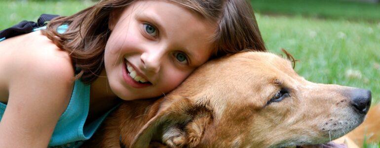 Czego człowiek może nauczyć się od zwierząt?
