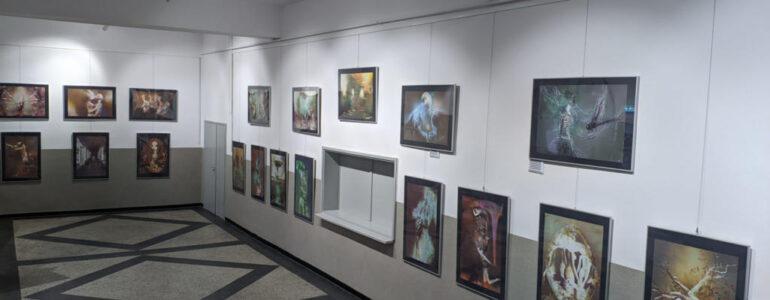 Wystawa Katarzyny Wieczorek – FILM, FOTO