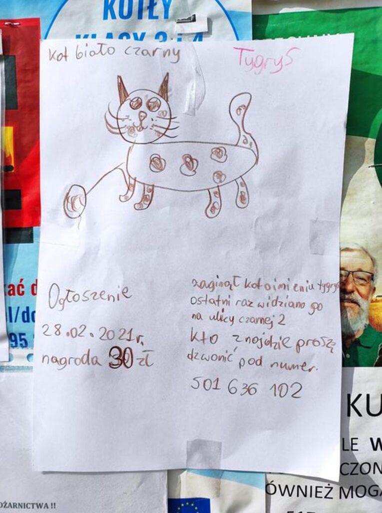 Wczoraj w Brzezince pojawiły się plakaty, narysowane dziecięcymi rękami. Dotyczą kocurka Tygryska, który się zapodział. Już wiemy, że kot jest cały i zdrowy.